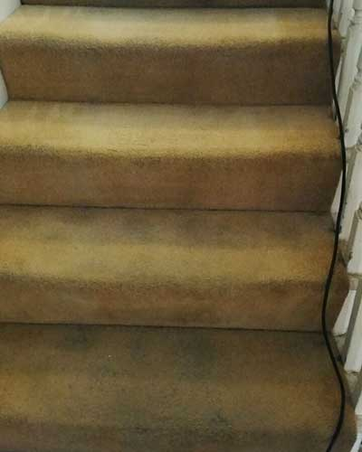 carpet-cleaning-london-3